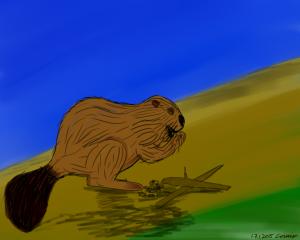 majava järsimässä tikkukasaa