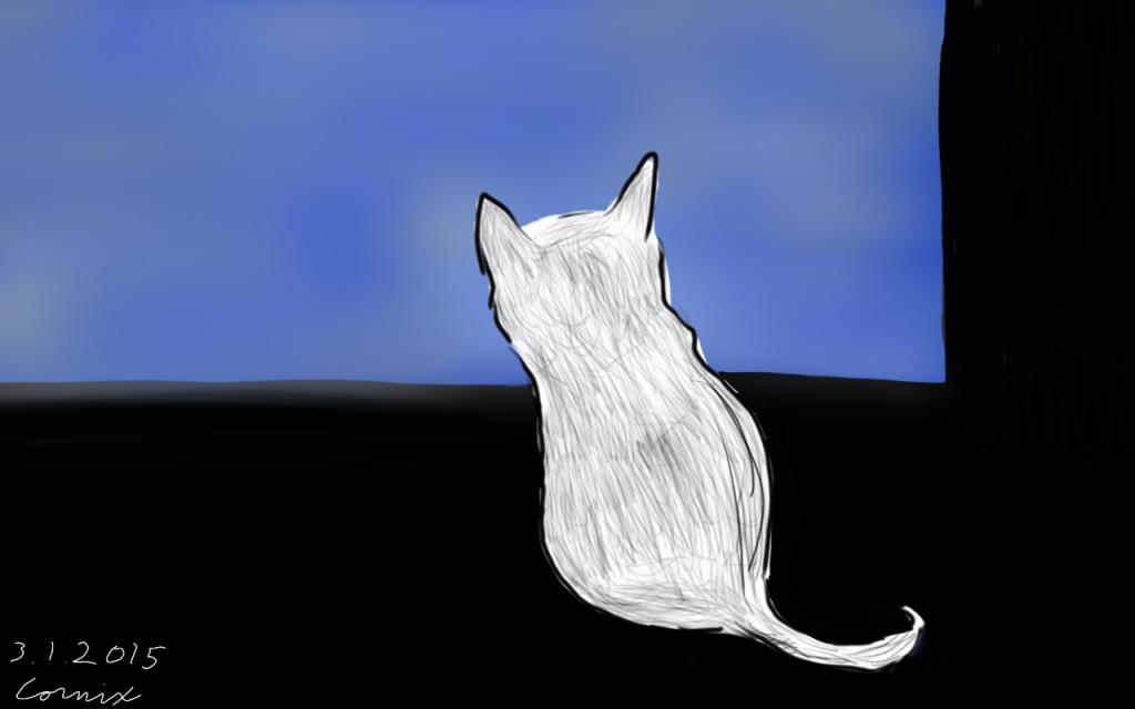 Harmaasävyinen kissa katsoo pimeässä huoneessa ulos ikkunasta. Ulkona on sinistä.