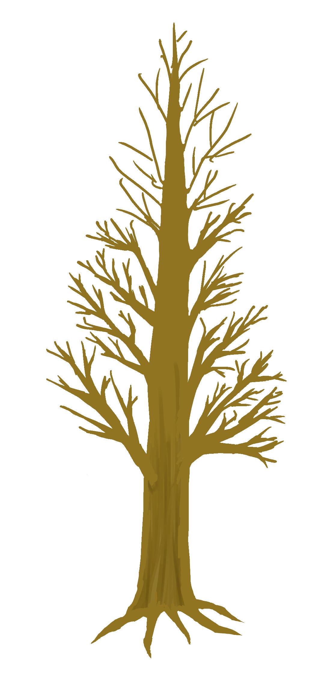 Paljas, runsasoksainen pitkä puu