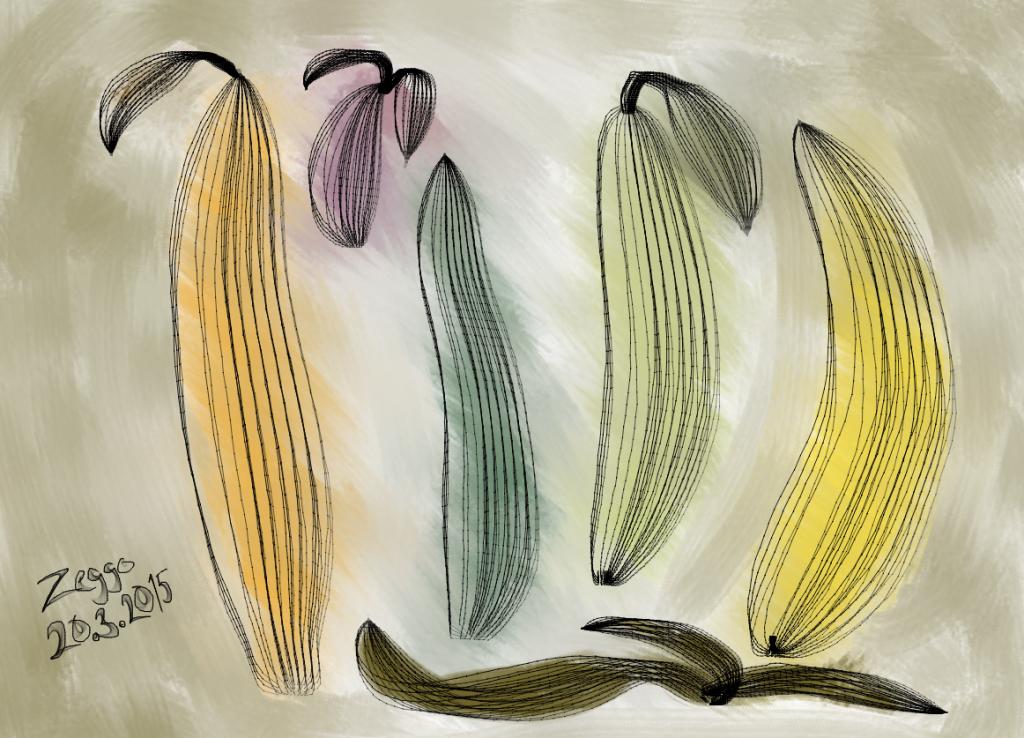 Viisi värikästä hedelmää pystyssä yhden ruskean kuoren vieressä